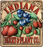 Indiana Berry